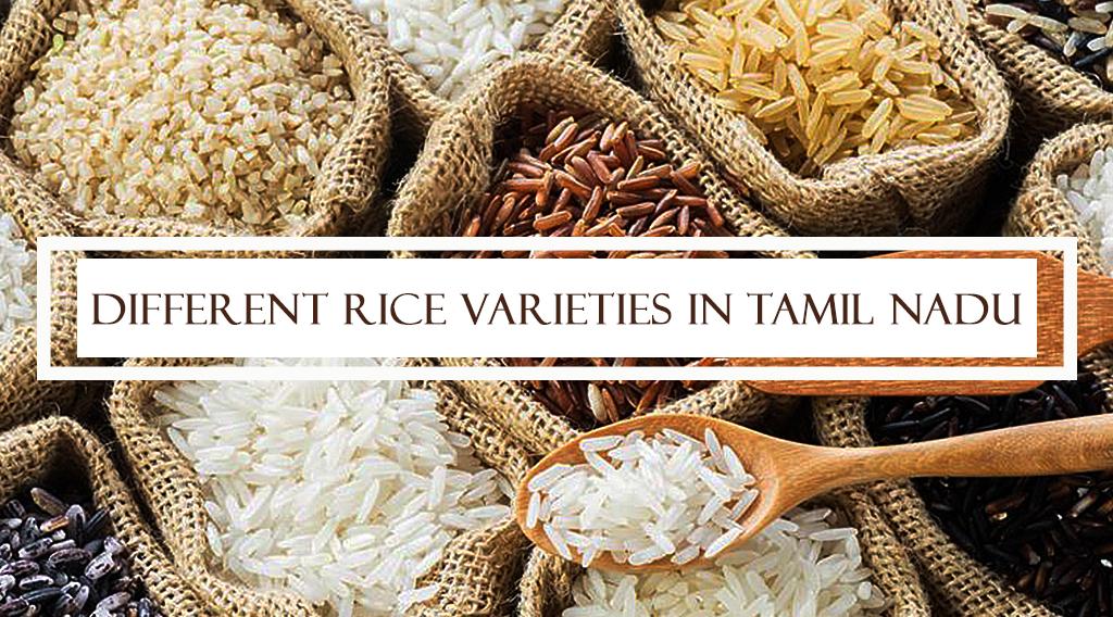 Different Rice varieties in Tamil Nadu